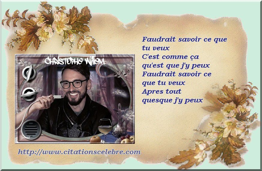 Citation de Christophe Willem, de son vrai nom Christophe Durier, un chanteur, auteur et compositeur français