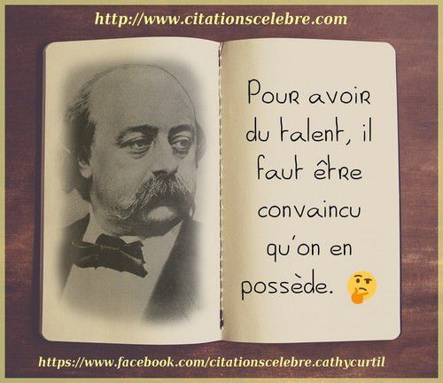 Citation De Flaubert Forumhulp