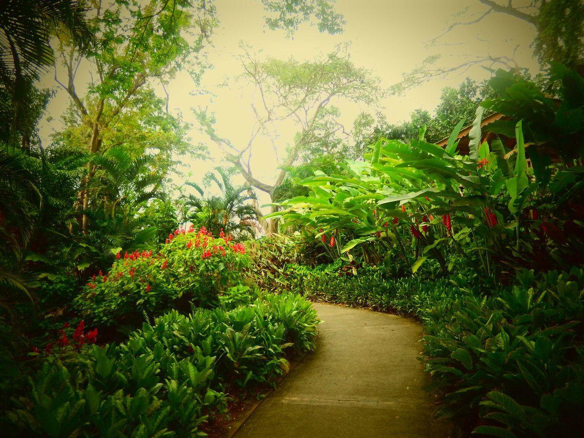 Guadeloupe - Jour 6 : Jardin botanique et cascade aux écrevisses