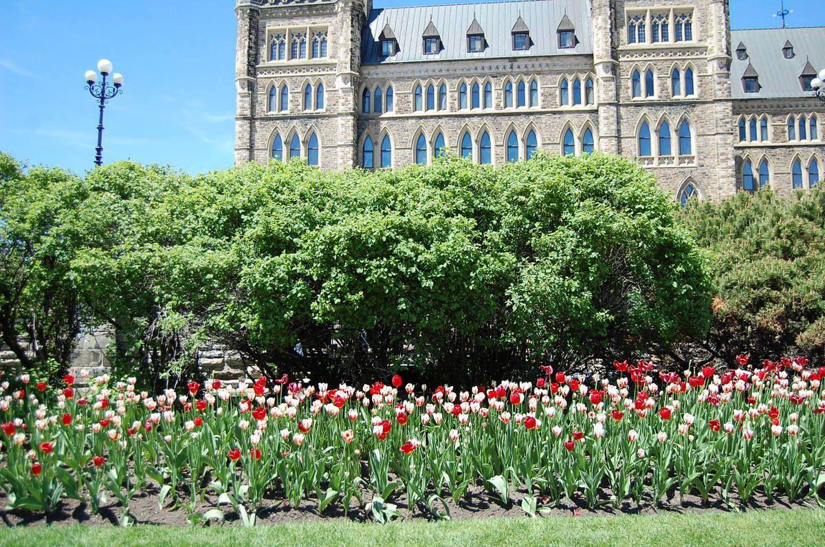 Ottawa : samedi 20 mai et à partir de là Québec : dimanche 21 mai
