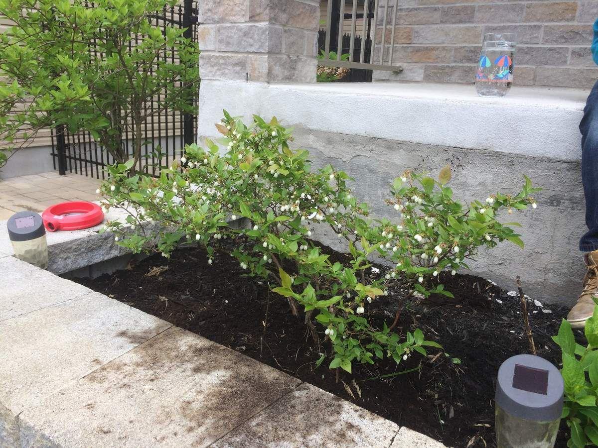 jardinage et déplacement de la bouteille de gaz