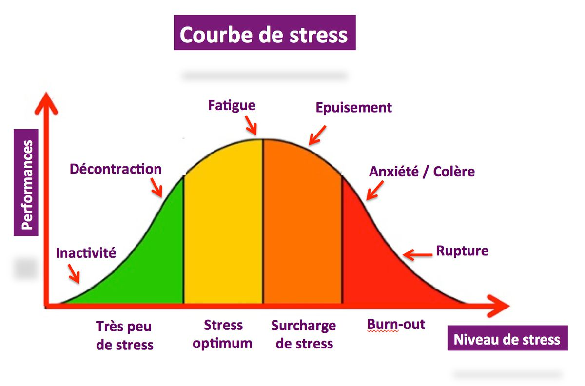 Adolescents   Le Stress