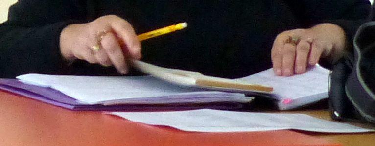 """La """"houlette"""" n'était en fait qu'un simple crayon de papier !"""