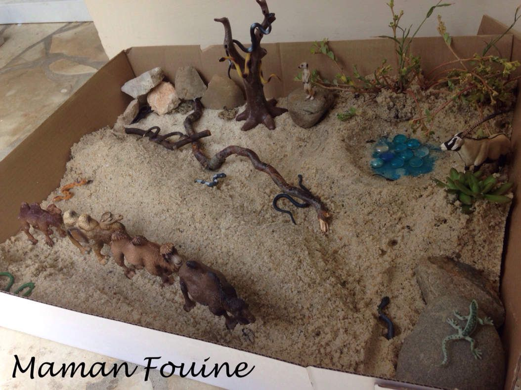 Mini-monde : le désert