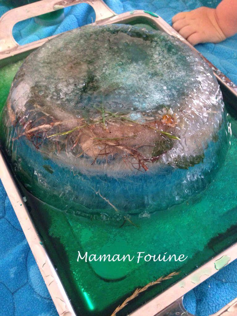 Petite mare aux grenouilles gelée