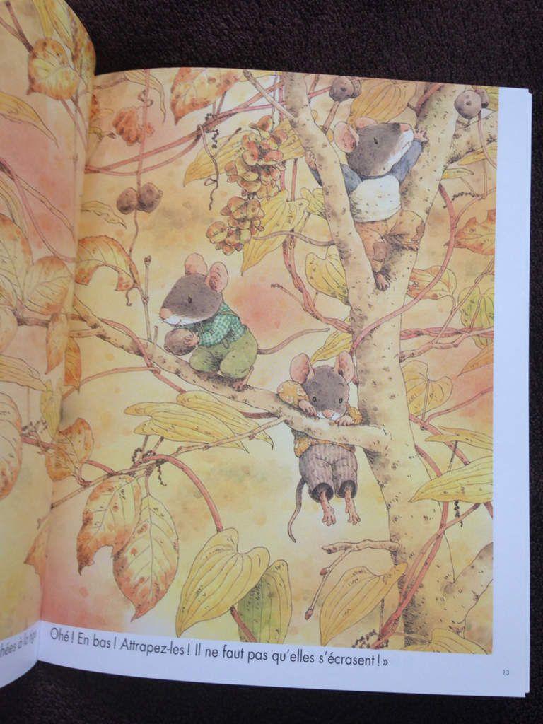 Albums autour de l'automne de Kazuo Iwamura