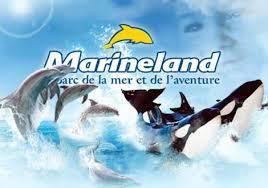 Journée à Marineland