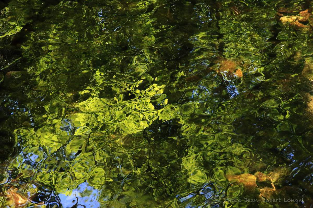 Loue, entre eau et lumière