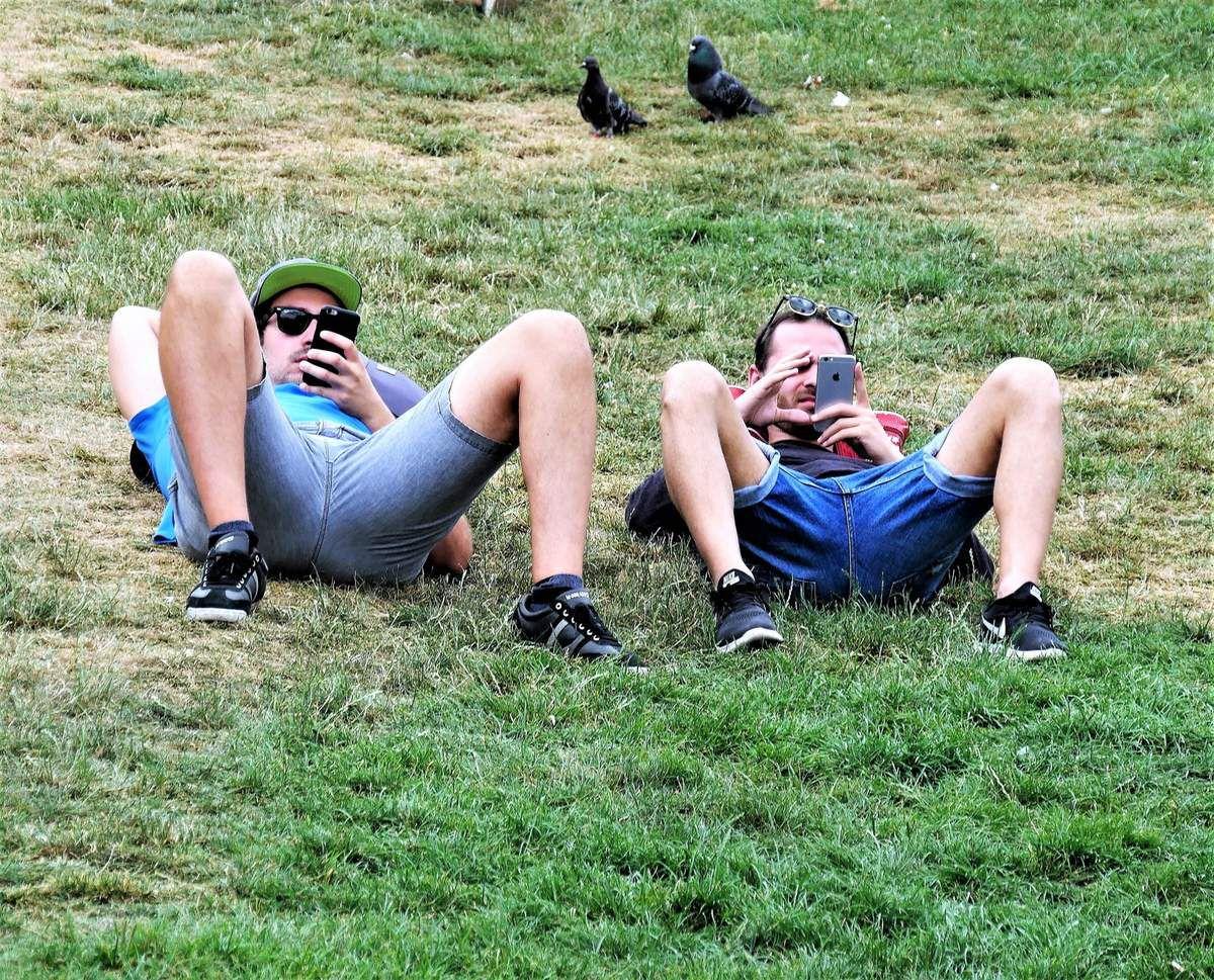 25 juin. Elégance des pigeons. Inélégance du manspreading!