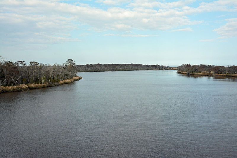 (Altamaha River, Géorgie, photo de Bubba73, 03/03/2015, wikipédia)