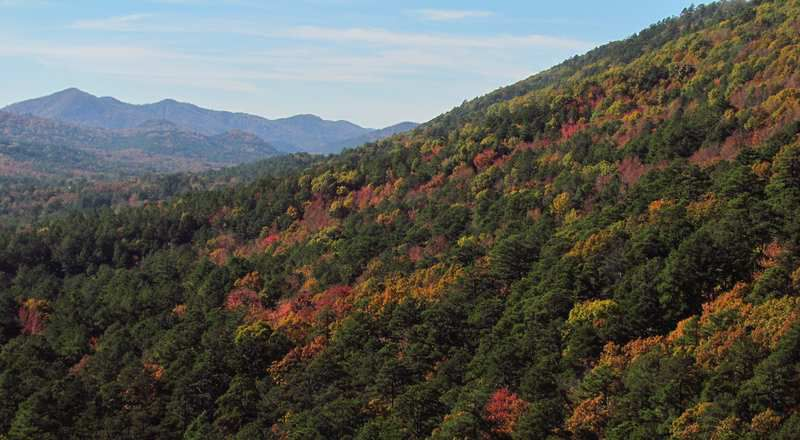 (West Hannah Mountain, Ouachita, Arkansas, photo de Tammo2011, 08/11/2014, wikipédia)