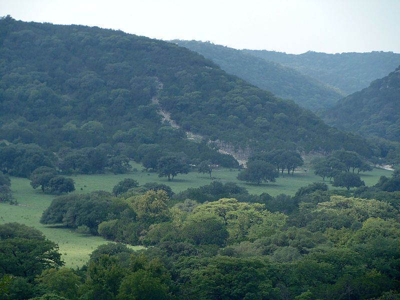 (Texas Hill Country, Texas, photo de Zereshk, wikipédia)