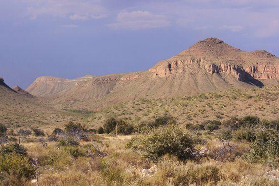 (Chihuahuan Desert, Texas, photo de Ricraider, 01/09/2013, wikipédia)