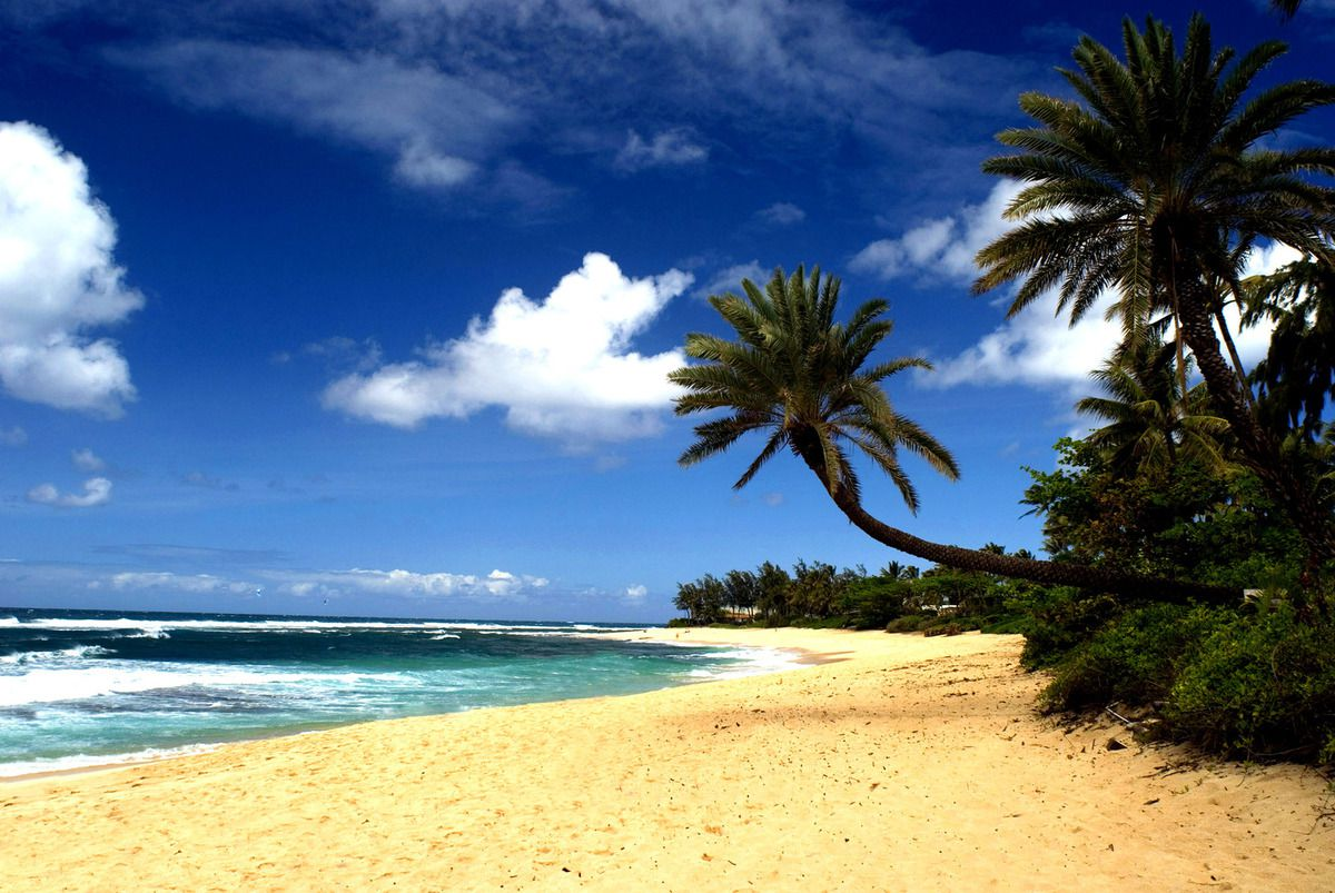 (Plage à Hawaï, photo www.sbhawaii.com)