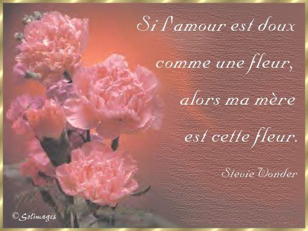 Image bonne f te gratuite pm19 jornalagora - Carte bon anniversaire maman ...