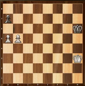 14) Les blancs jouent et gagnent