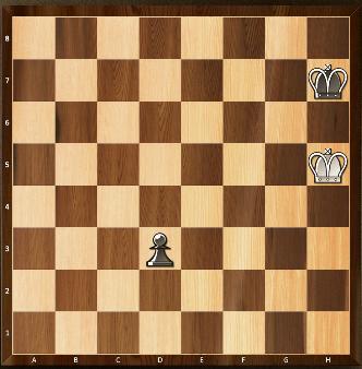 15) Les blancs avancent leur pion de deux cases. Le pion noir prend le pion blanc en passant.