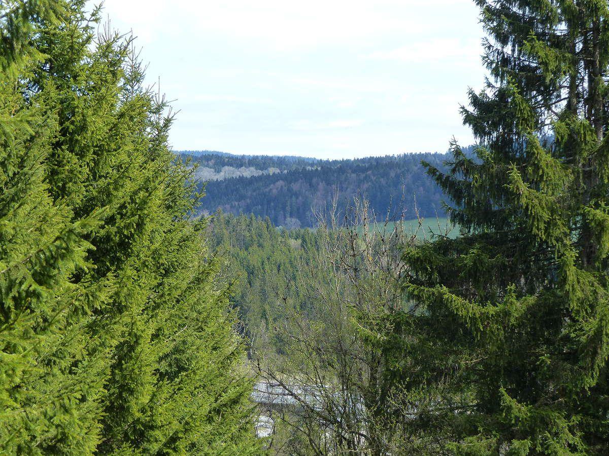 Sortie dans le Jura/Doubs  / Hang out in Jura/Doubs region
