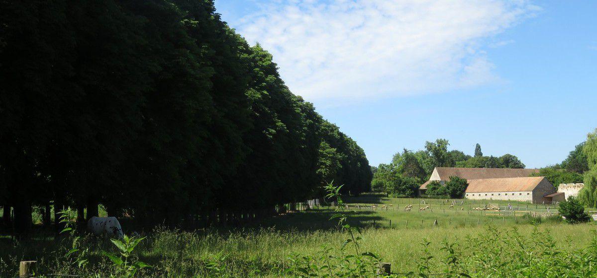 Des paysages de la campagne...