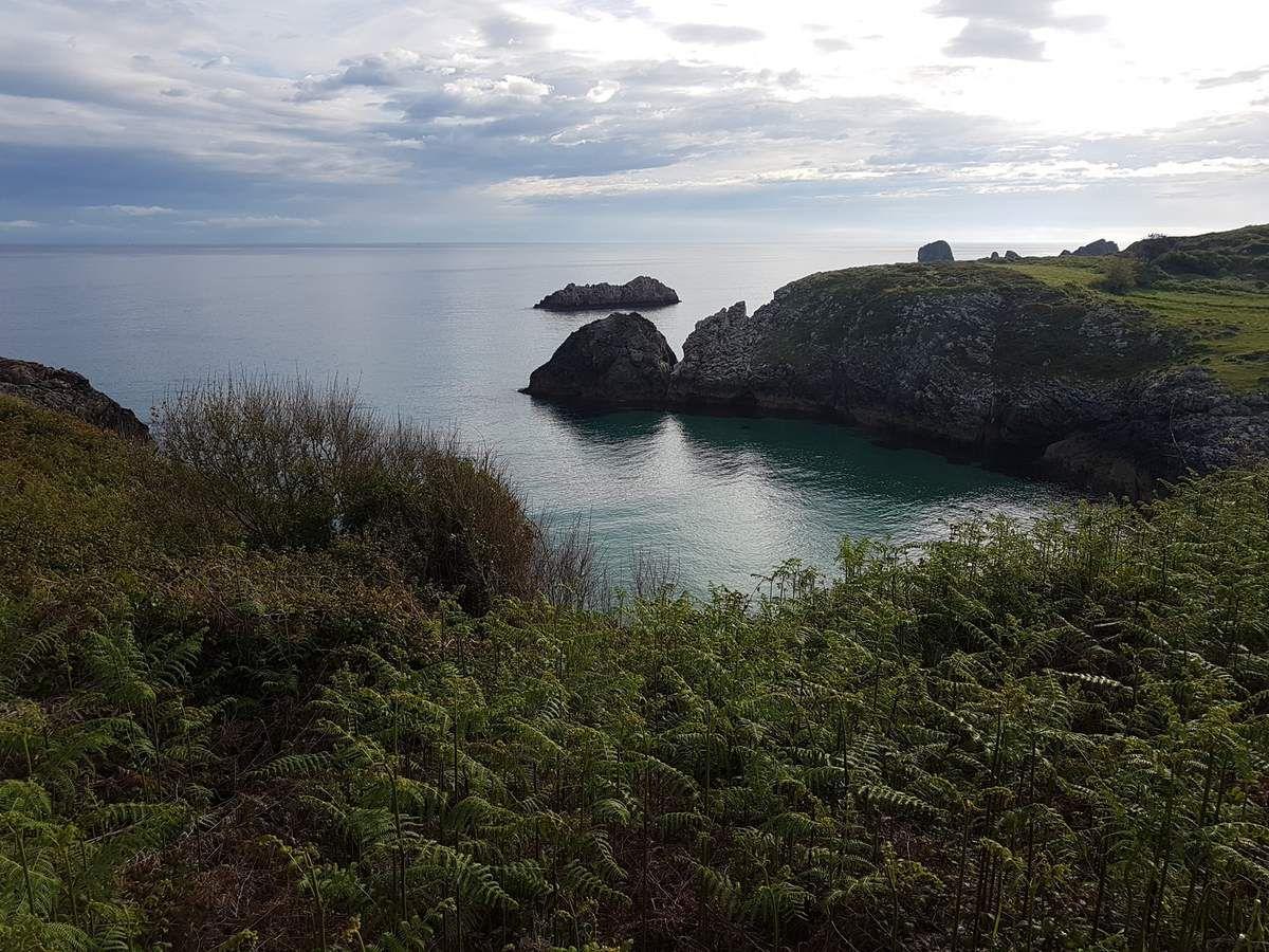Different sceneries on that section (sea meet mountains)/ les paysages sont différent ici ( la mer rencontre la montagne)