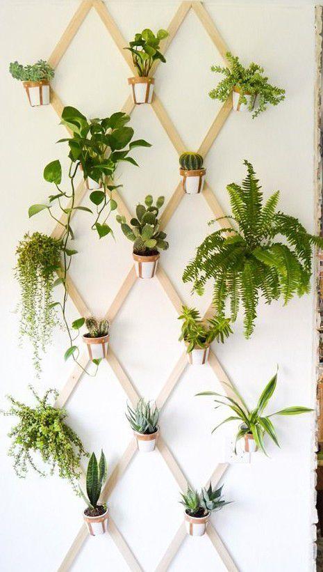 Projets plus ou moins réalisable d'un jardin d'intérieur