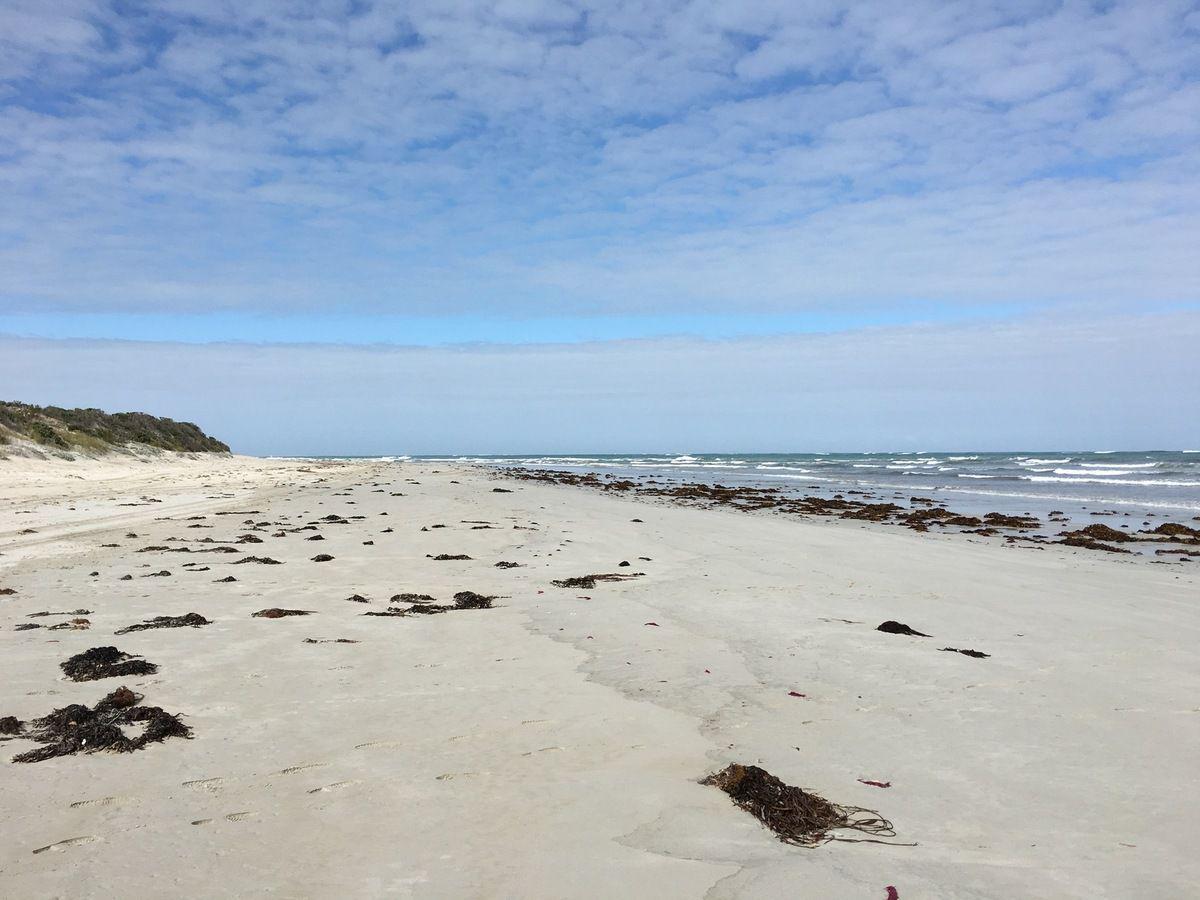 Derrière les dunes, les plages et les Beach drivers