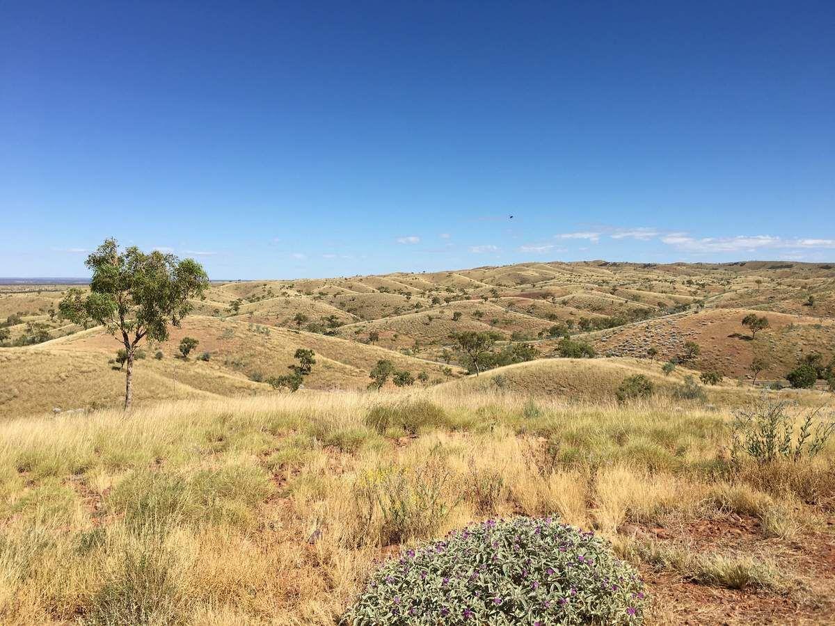 Steppe australienne et dans le fond Tnorala (Gosse Bluff) : légendaire cratére formé par un météorite