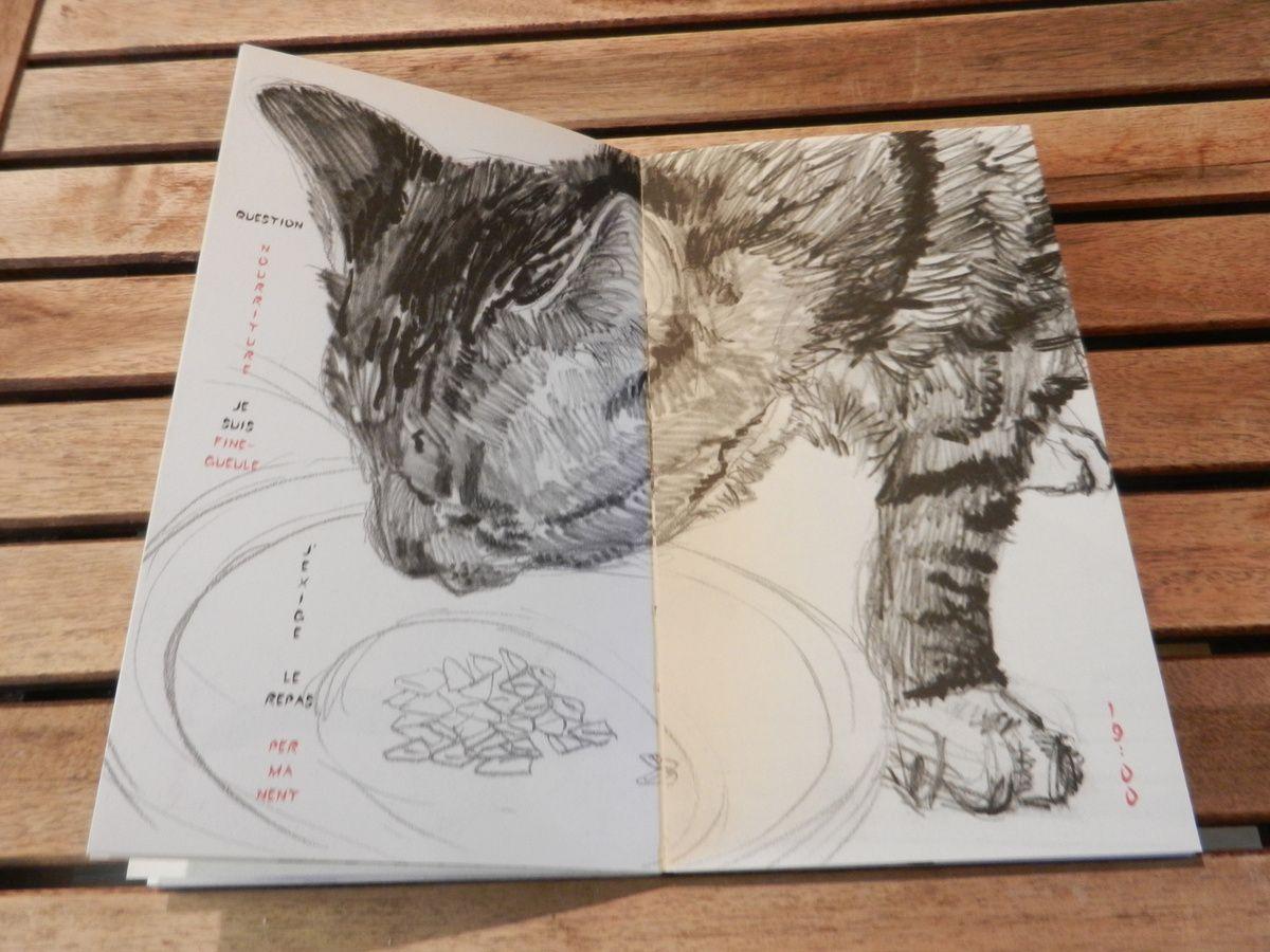 L'art d'être chat...