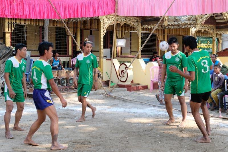 football birman