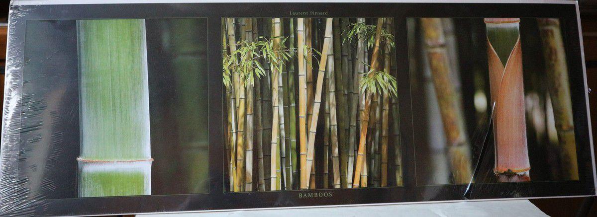 DC004 - poster 'Bambou' - 34x98cm - 10€