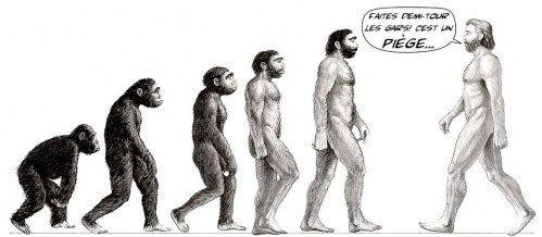 Les évolutions de l'Evolution