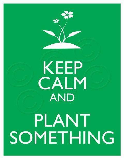 Inilah Contoh Poster Lingkungan Yang Menarik Infokan Over Blog