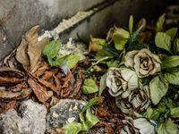 Les fleurs artificielles ont souvent de jolies couleurs passées