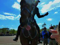 Clichés londoniens, typiques. Les gardes, la relève de la garde... O:)