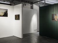 EXPOSITION | Galerie Stimultania