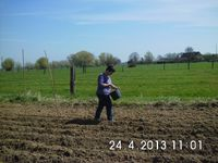 6. Potagers collectifs