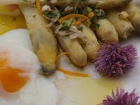 Asperges blanches , sauce verte avec son oeuf à 65° ( cuisson basse température) IG BAS