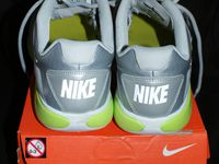 Baskets argentées Nike Everyday Fit + P. 38 1/2 : 65 euros