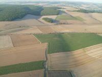 Voilà à quoi ressemble le Tonnerrois entre grandes cultures, forêts et le TGV qui passe dans un bruit effroyable.