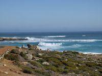 AFRIQUE DU SUD (Cape Town)