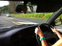 Un dimanche chez les Kiwis : Kiwi's way of life
