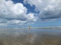 Cape Reinga &amp&#x3B; 90 Miles Beach, le bout du monde