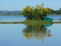 Mandalay - Hsipaw
