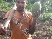 VANUATU : La trilogie volcanique