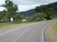 Ruta 9 (Argentine en camping-car)