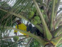 Mompiche: Playa para descansar