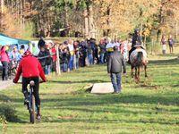 Course N°9: Joêl rencontrait Pénélope/Pistache, après une lutte acharnée le cheval a remporté l'épreuve
