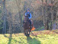 Course N°10: Yolande affronte Lucas/Loas, avec son entraînement quotidien Yolande a eu raison du jeune cavalier