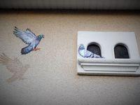 Joli petit nid pour nos tourtereaux !!!