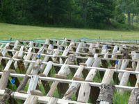 L'accueil à Arlebosc, les randonneurs,  et les champs d'escargots